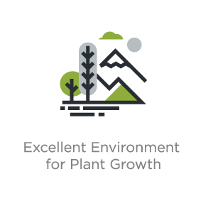 Excellent Environment for Plant Growth