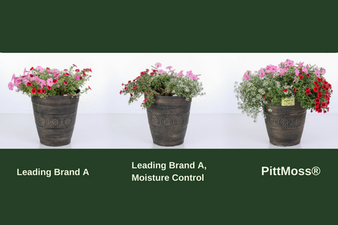 Plants grown in PittMoss potting soil grow bigger and stronger with less water and applied nutrients