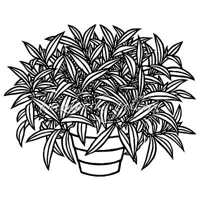 "Jacques Hnizdovsky, #109 Flower Pot, woodcut, 1970, 8"" x 10"" (image size)"