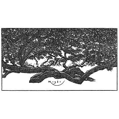 "Jacques Hnizdovsky, #298 Walking Tree, New Orleans, woodcut, 1981, 7.5"" x 14"" (image size)"
