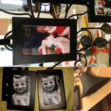 Family Tree Display With 10 Hanging Photo Frames