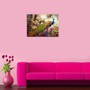 Beautiful Peacock DIY Painting Home Art  Pictures For Living Room