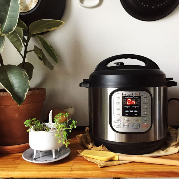 Instant Pot IP-DUO60 V3 - 220v SG voltage compatible