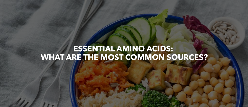 Essential Amino Acids: What are the most common sources?