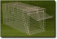 FOX TRAP LARGE