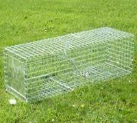RABBIT TRAP SINGLE ENTRY