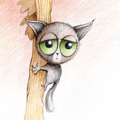 'Bush Baby With Big Eyes' Cuties Birthday Card for boy/girl cute drawn sketch