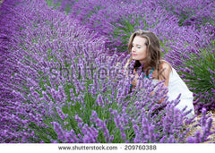Beautiful girl in a lavender field in Provence France