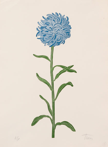Blue Flower by Fernando Torn