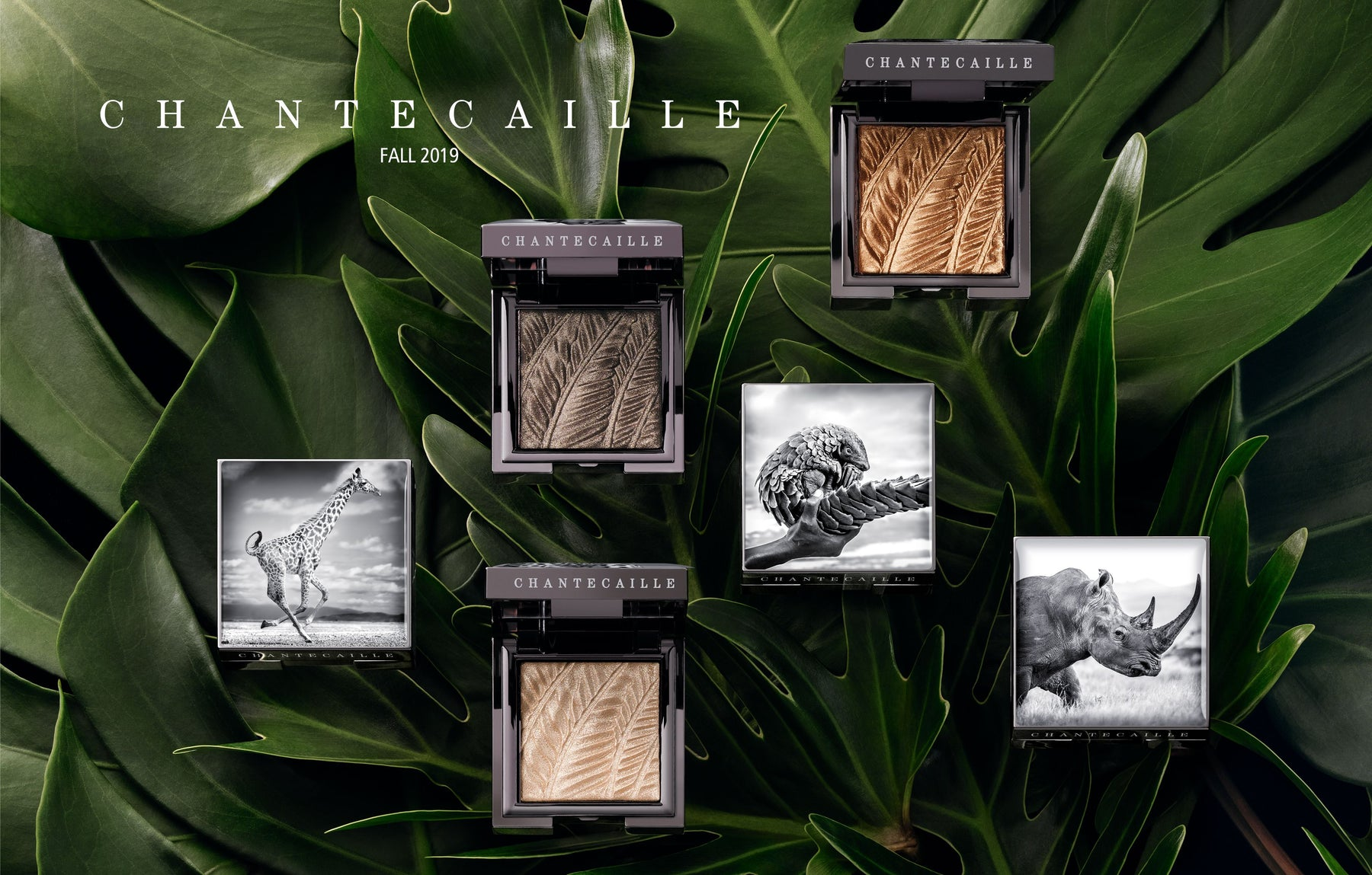 Beauty shot top view of a selection of Chantecaille's Fall 2019 Collection of Luminiescent Eye Shades shown open and closed palettes with African animal graphics with green leaves in the background.