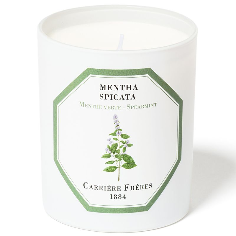 Carriere Freres Spearmint Candle (6.5 oz)