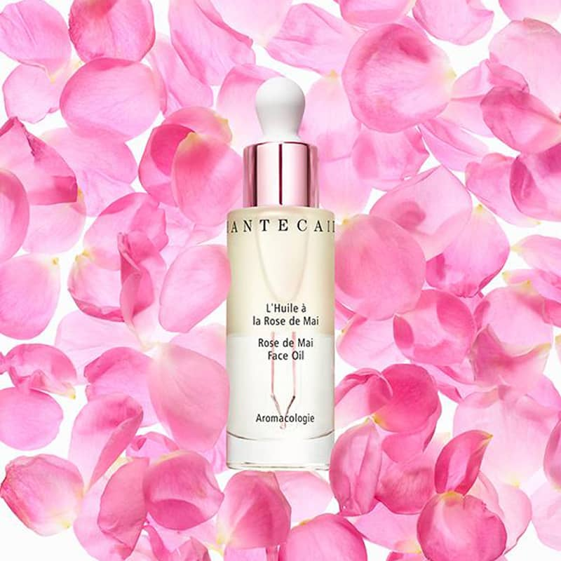 Chantecaille Rose de Mai Face Oil 30 ml with pink rose petals in the background