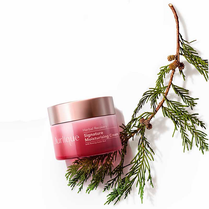 Jurlique Herbal Recovery Signature Moisturizing Cream with branch