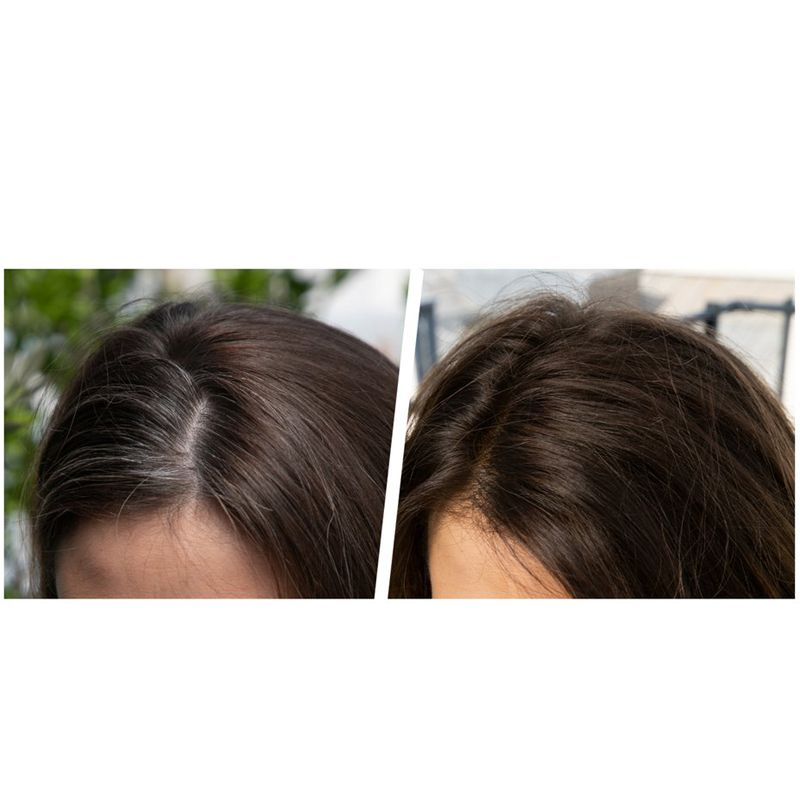 Christophe Robin Temporary Color Gel in Light Chestnut before and after photo