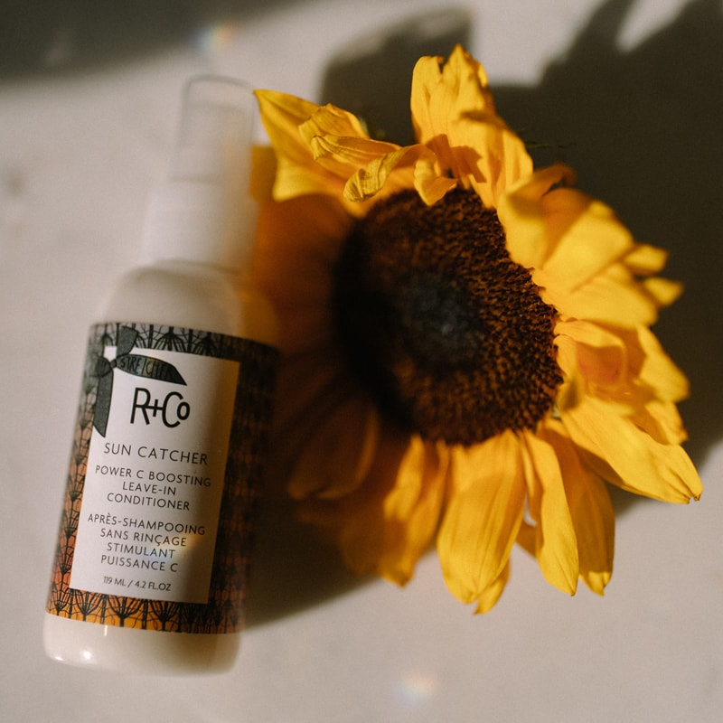 R+Co Sun Catcher Power C Boosting Leave In Conditioner (4.2 oz) shown with sunflower