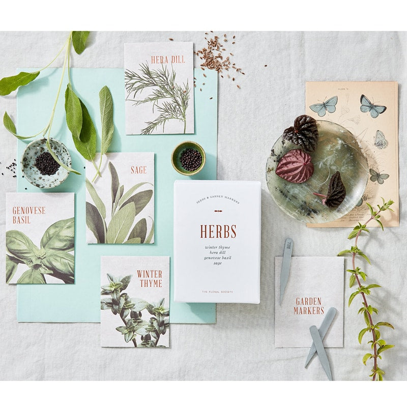 The Floral Society Herb Seed Kit - Lifestyle shot showing garden markers and seeds
