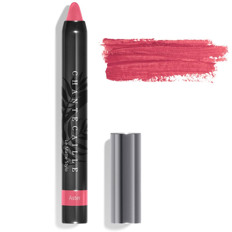 Chantecaille Le Matte Stylo Aster 2.5 g with color smear