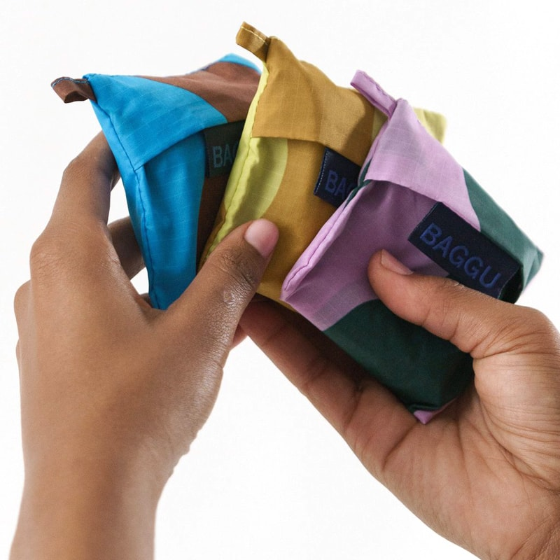 Baggu Wine Baggu Set of 3 - Wavy Stripes showing 3 folded bags in their pouches in model's hands