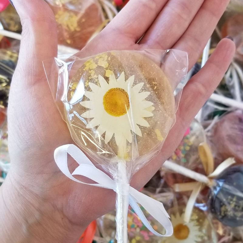 Sweet Caroline Confections Daisy and Gold Lollipops – Mandarin Orange shown with hand to give size perspective