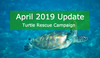 The Turtle Rescue Campaign - April Update