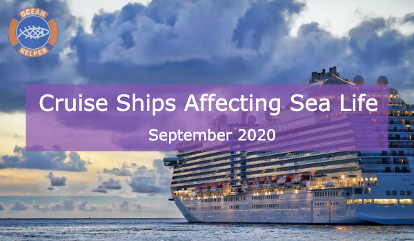 What Impact Do Cruise Ships Have On The Environment?