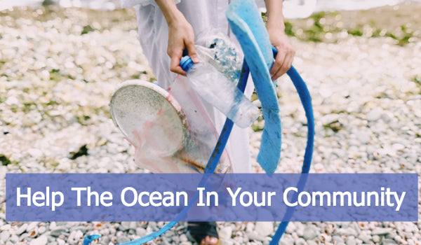 Get Involved - Help The Ocean In Your Community