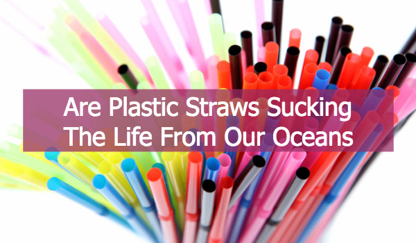 Plastic Straws Are Sucking The Life From The Ocean