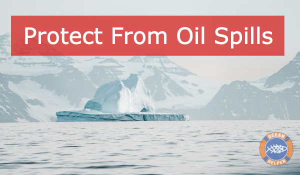 Protect the Arctic & Wildlife From Oil Spills