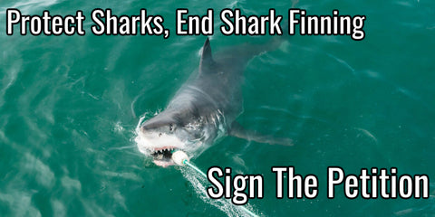 End Shark Finning - Sign The Petition