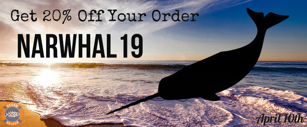 Narwhal Day Offer