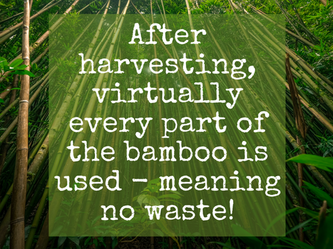 No Waste Bamboo