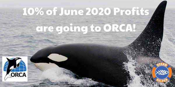 Orca Awareness Month - Donation to Orca