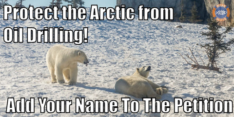 Sign the petition - Protect the Arctic from drilling