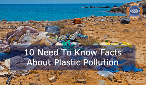 10 Shocking Facts About Plastic Pollution