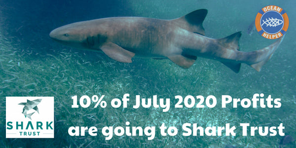 10% to Shark Trust in July 2020