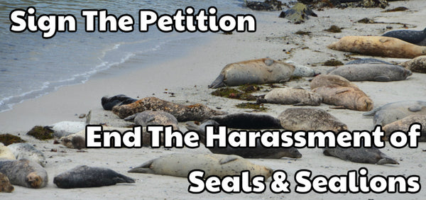 Sign The Petition - Seal Harassment