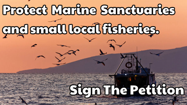 Sign The Petition - Supertrawler Ban in Protected Areas