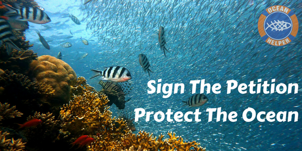 Sign the Petition Coral Reef