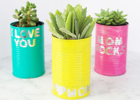 Tin Can Planters - The Best Idea For Kids