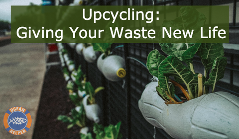 Upcycling - Giving Your Waste A New Life