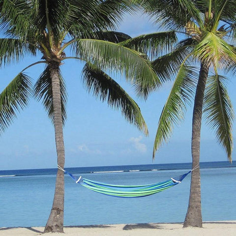 Double Ocean View Hammock