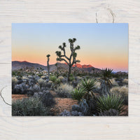 Joshua Tree Sunrise Photo Print