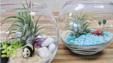 how to have a terrarium birthday party at Craft Habit Raleigh