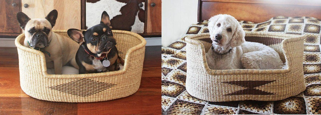 Dog bed used as dog basket beds