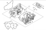Beta OEM - BOTTOM END GASKET SET - 250/300RR