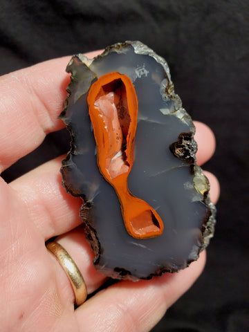 RED FOX AGATE #3