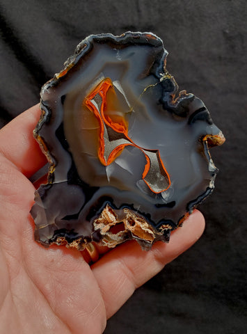 RED FOX AGATE #47