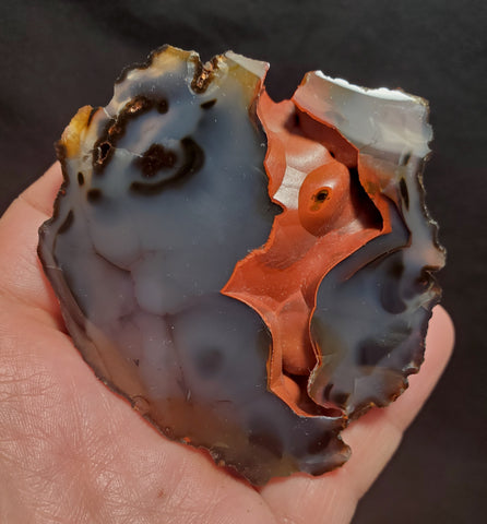 RED FOX AGATE #61