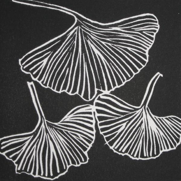Gingko 1 (Black Ink on White Paper)