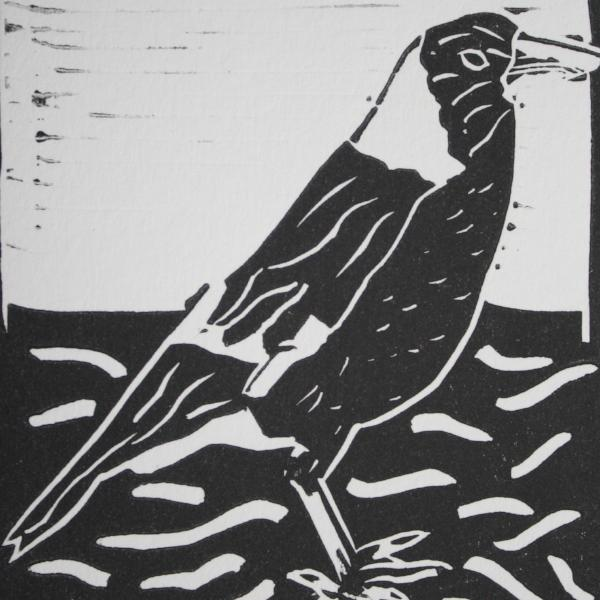 Magpie 4 (Black Ink on White Paper)